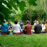 Zomerweek-meditatie-groep-in-natuur