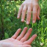 handen